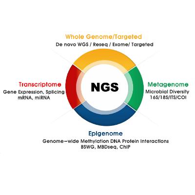 วิเคราะห์ลำดับเบส NGS (Next-Generation Sequencing: NGS Service)