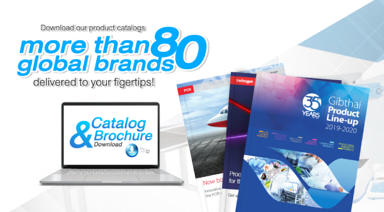 Catalog Brochure Download
