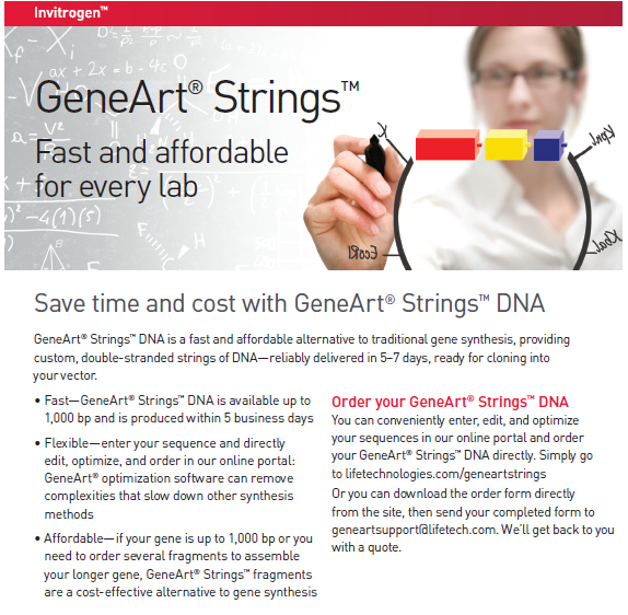 Invitrogen GeneArt® Strings™ DNA fragments