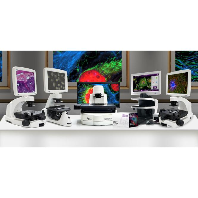 กล้องจุลทรรศน์หัวกลับ  (Inverted Microscope) EVOS™ Imaging System