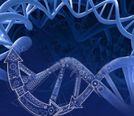 GeneArt® Gene Synthesis and Services