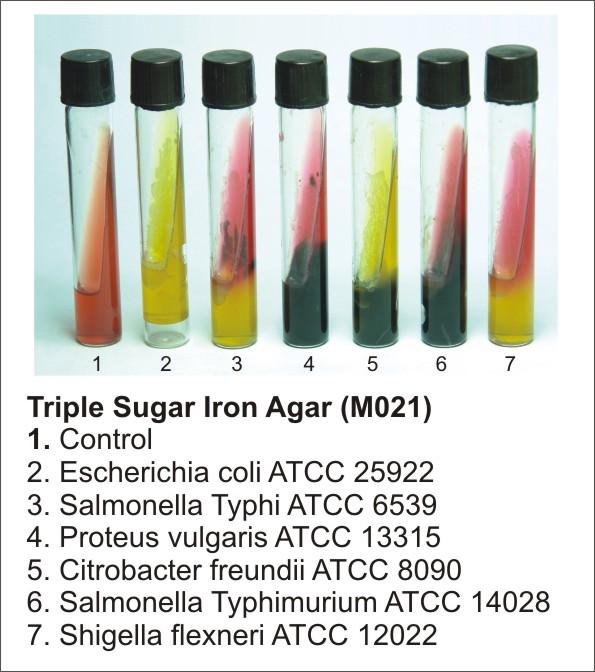 TRIPLE SUGAR IRON AGAR, 500 G.